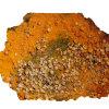 Curry - CRAPSA - x 1kg.